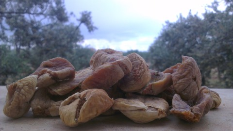 Beyond the Dried Figs Factory: Forty Women are Proud to Work!