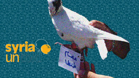Activism in Damascus: Pigeons Break the Regime's Siege