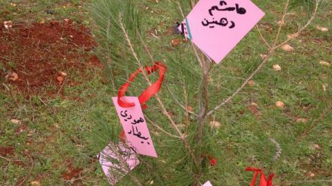 شجرة تحمل أسماء شهداء المدينة ضمن حملة التشجير. المصدر: صفحة الناشطة زينة ارحيم على الفيسبوك