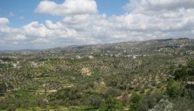الساحل السوري: هل وقع في فخ التشييع السياسي؟